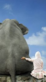 Funny Girl and Elephant