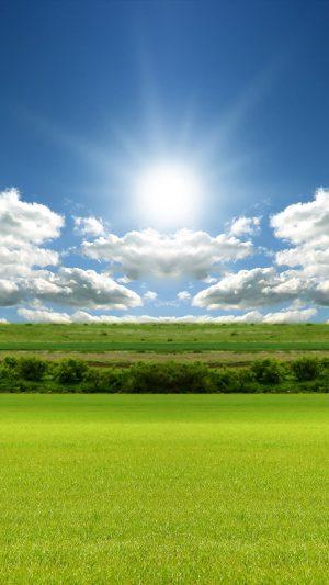 Grass Sun and Sky