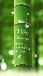 I Love You Bamboo