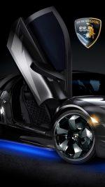 Lamborghini Car Bat