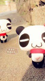 Panda Love Japan