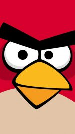 Angry Bird Closeup Red