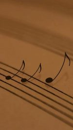 Music   117