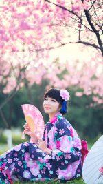Sakura Season Japanese Girl Japan