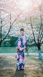 Japanese Girl in Kimono Sakura