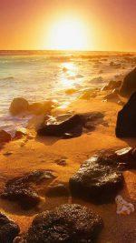 Beach   108