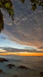 Palm trees Sunset