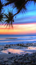 Beach   187