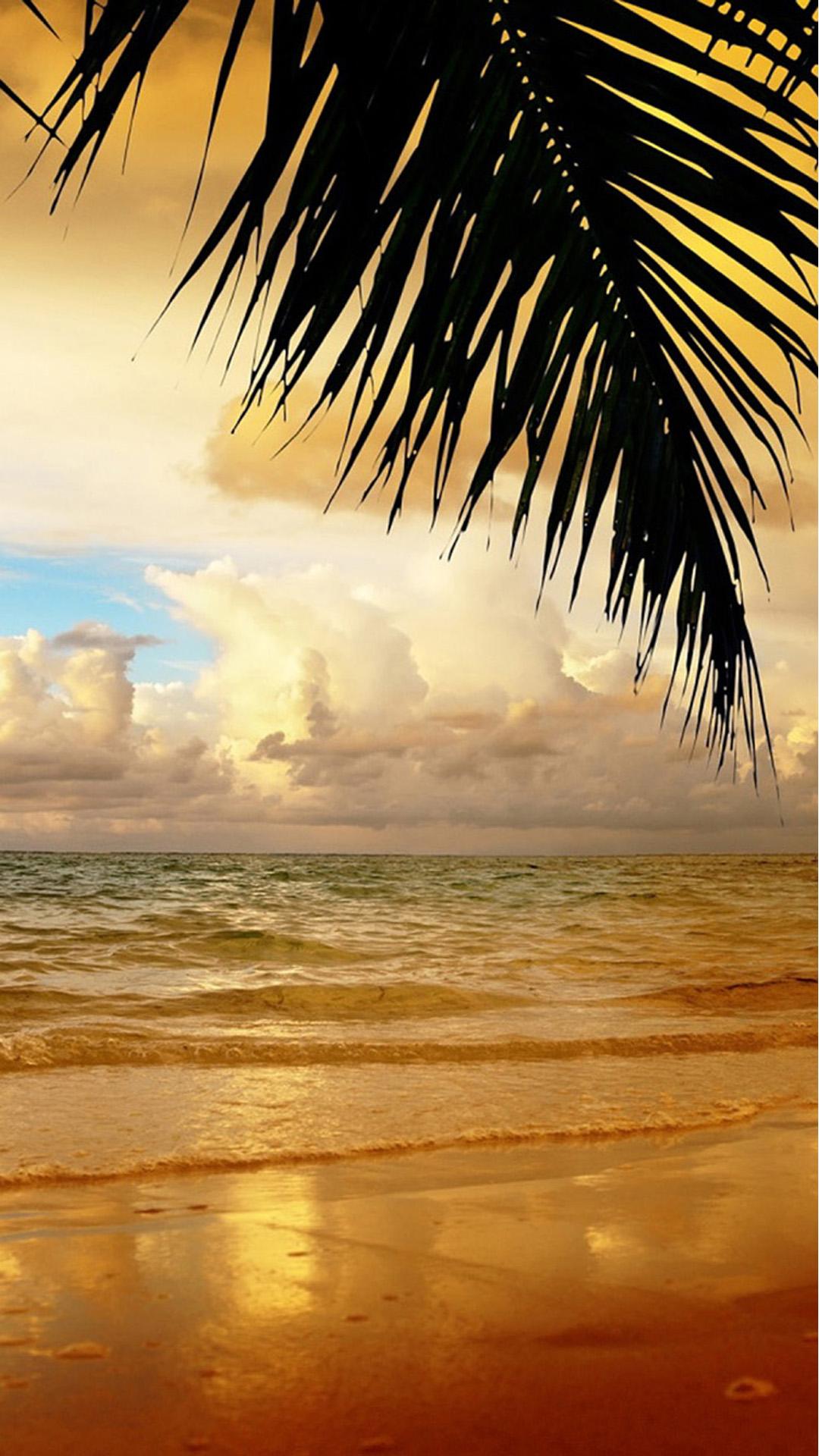 Beach   199