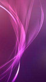 Colorful Purple Pink