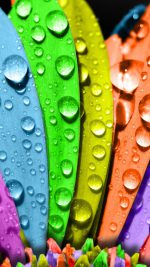Colorful macro water drops
