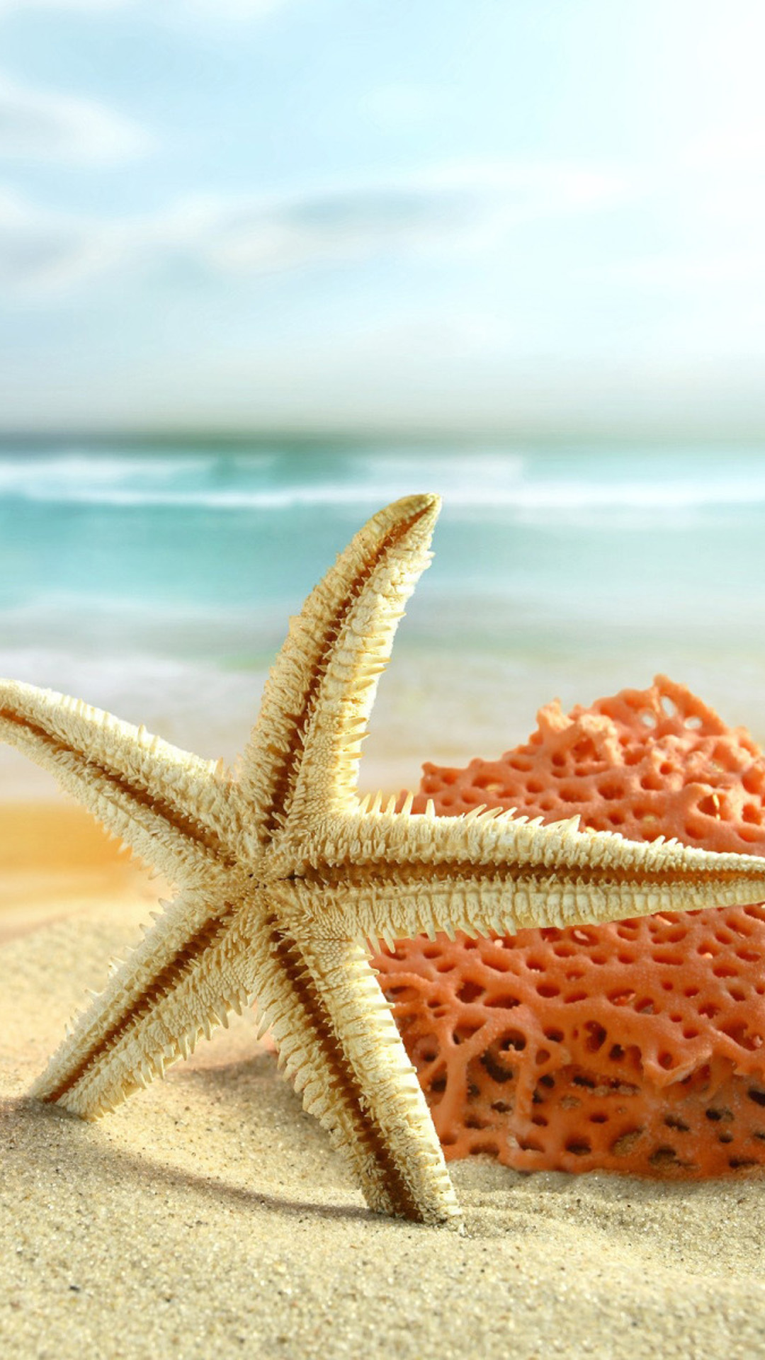 Starfish Beach Toys
