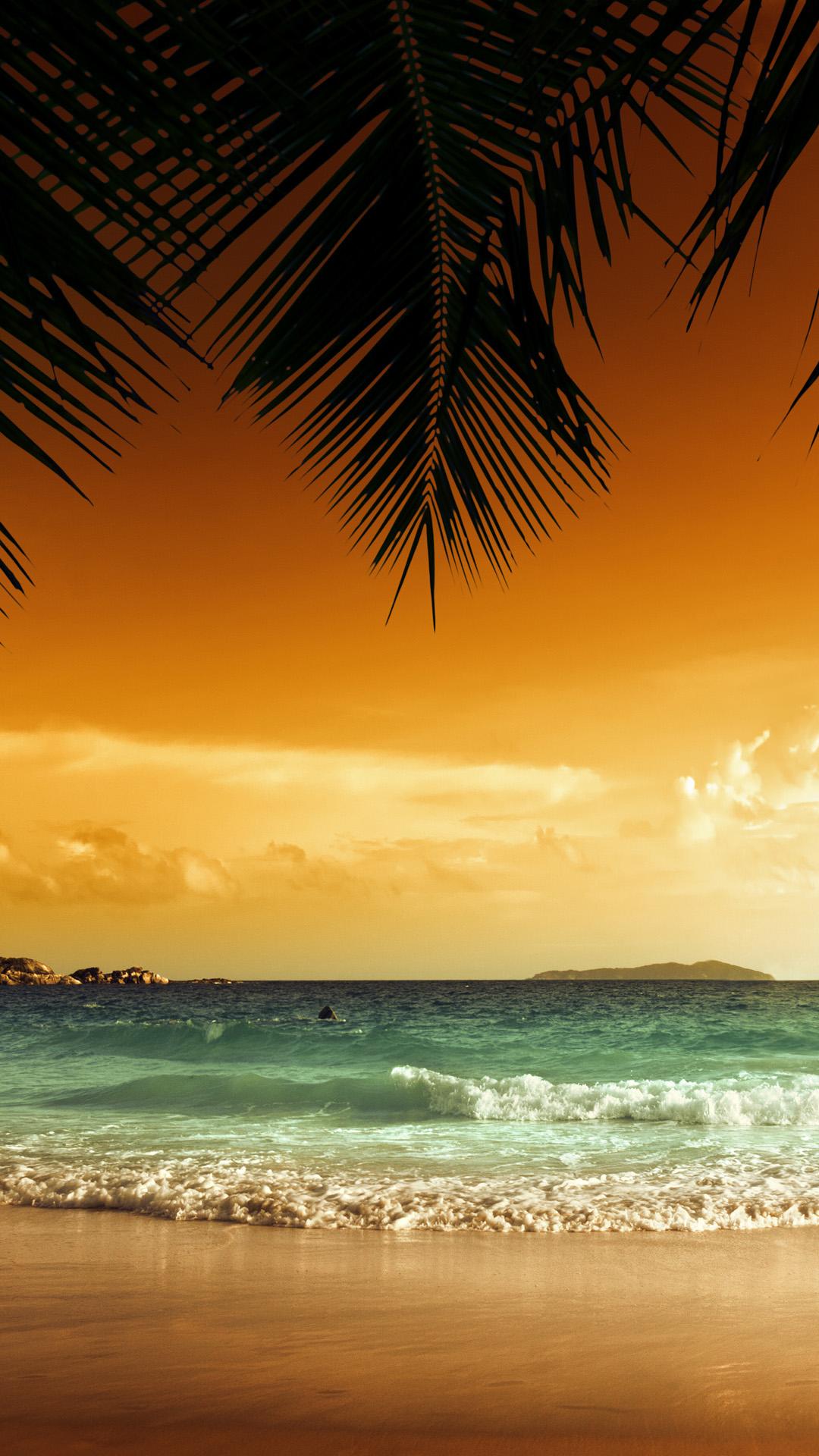 Sunset Beach Green