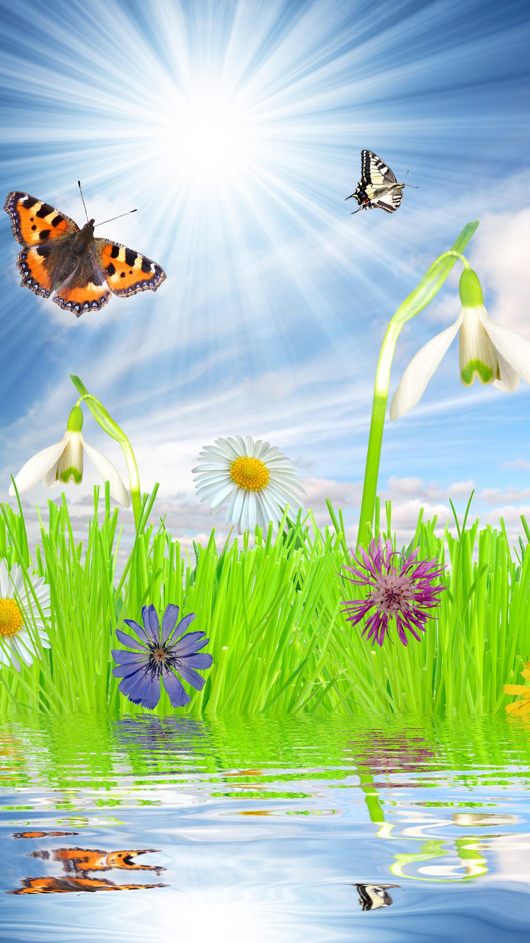 Beautiful Spring Mood