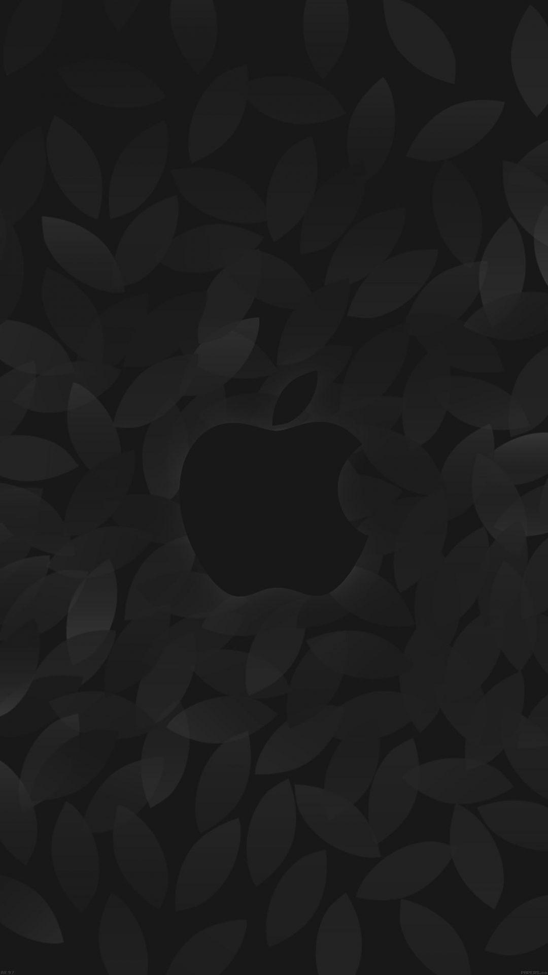 Apple In Fall Dark