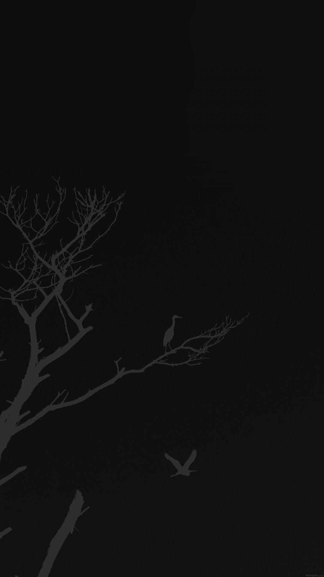 Bird Sunset Tree Dark Nature Minimal