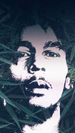 Bob Love Music Face