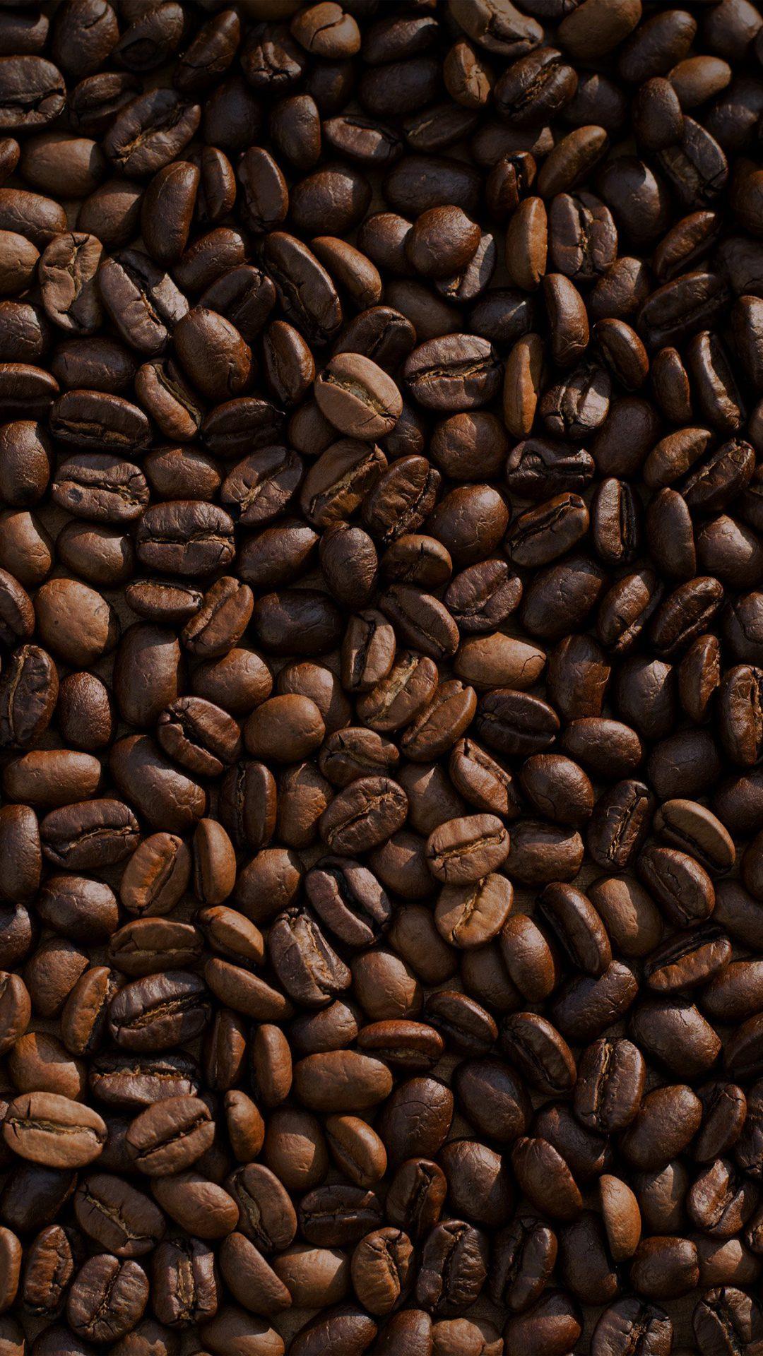 Coffee Food Brown Eat Nature Drink Life