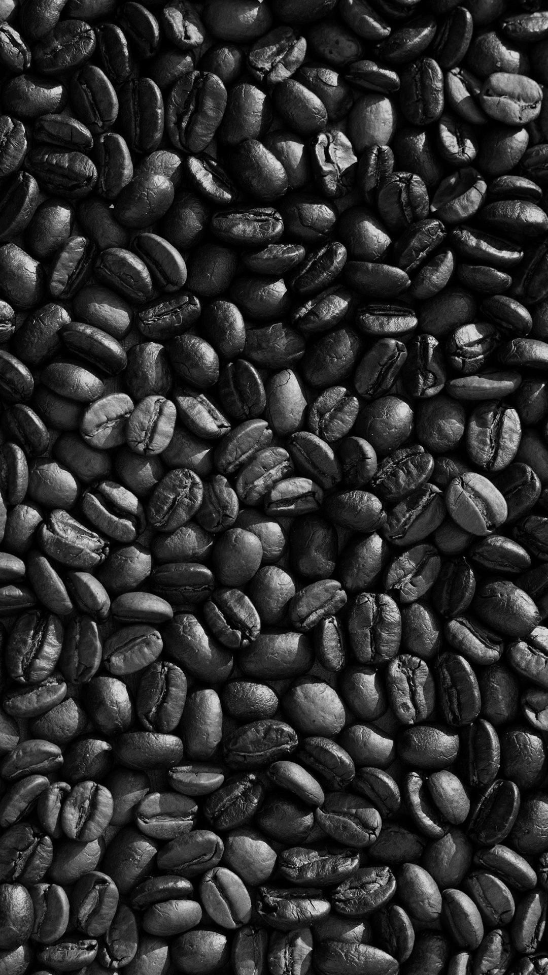 Coffee Food Brown Eat Nature Drink Life Cafe Bw Dark