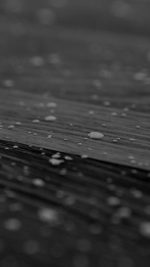 Drops Of Milk On Floor Pattern Nature Dark Bw