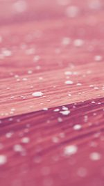 Drops Of Milk On Floor Pattern Nature Pink Red
