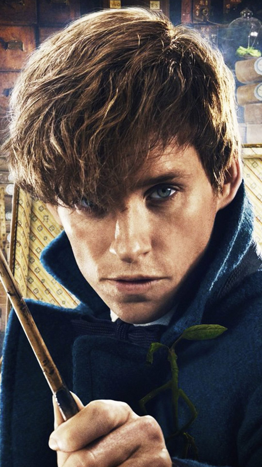 Fantastic Beasts And Where To Find Them Film Illustration Art