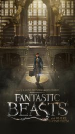 Fantastic Beasts And Where To Find Them Film Illustration Art Poster