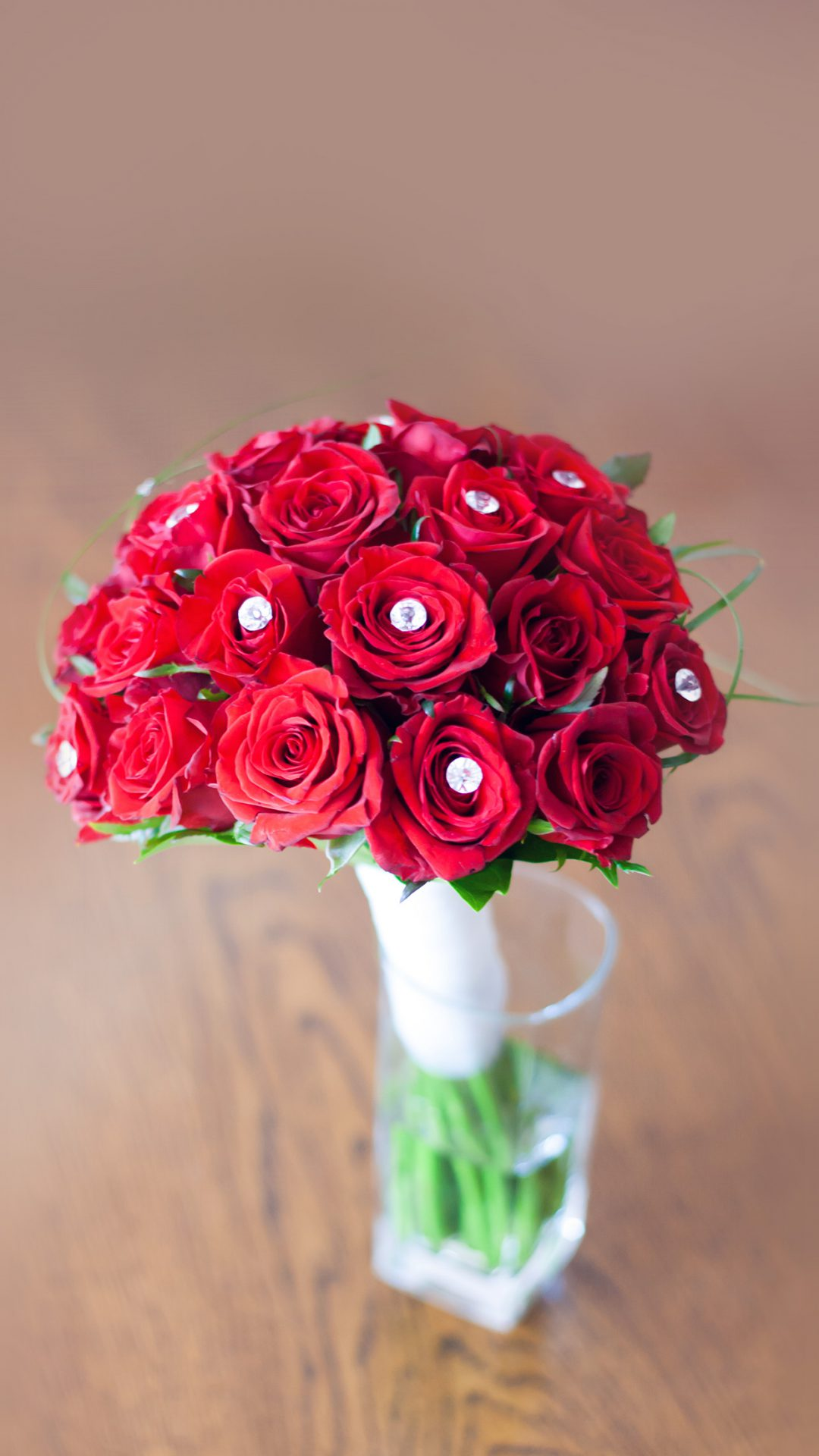 Flower Red Vase Life Art Nature Rose Sprin