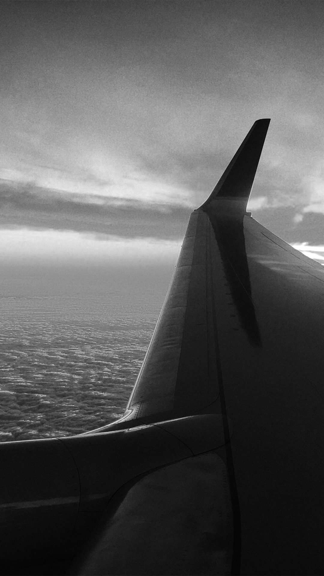 Fly Travel Sunset Red Nature Air Sky Bw Dark