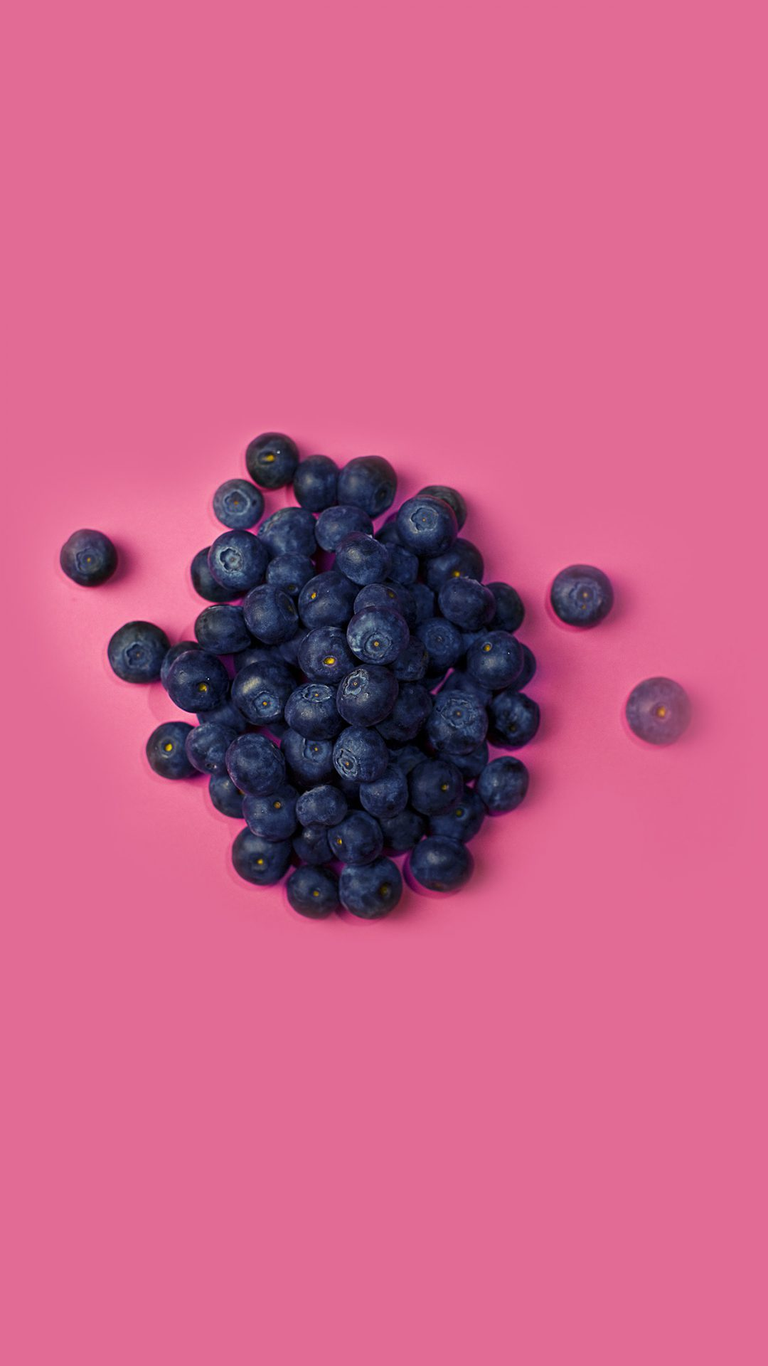 Food Blueberry Pink Art Nature