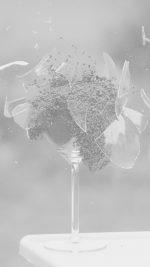 Glass Breaking Nature Art White Bw