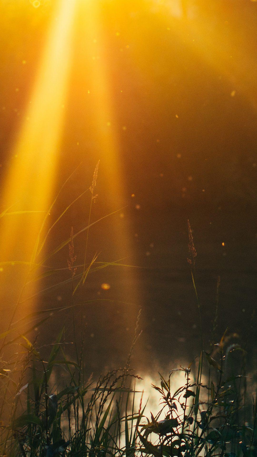 God Light Loves You Nature Flower Lake