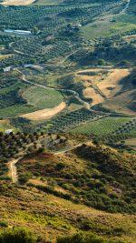 Land Green Farm Nature Love