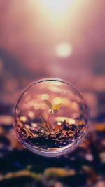 Life Begins Leaf Waterdrop Nature