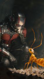 Marvel Antman Metts Ant Film Art Illustration
