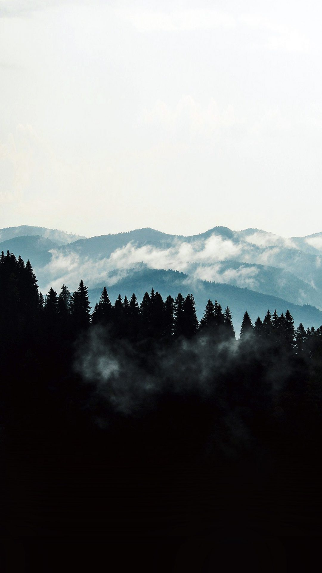 Mountain Fog Nature View Wood Forest Dark
