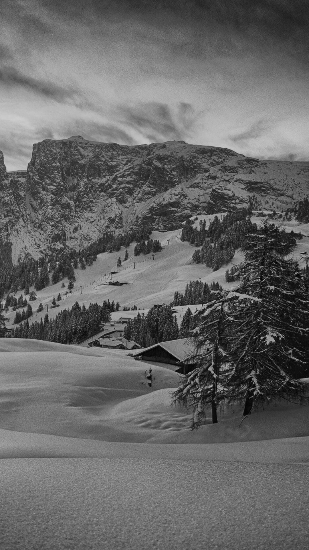 Mountain Green Snow Winter Nature Ski Dark Bw