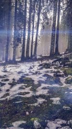 Mountain Snow Woods Nature Blue Flare