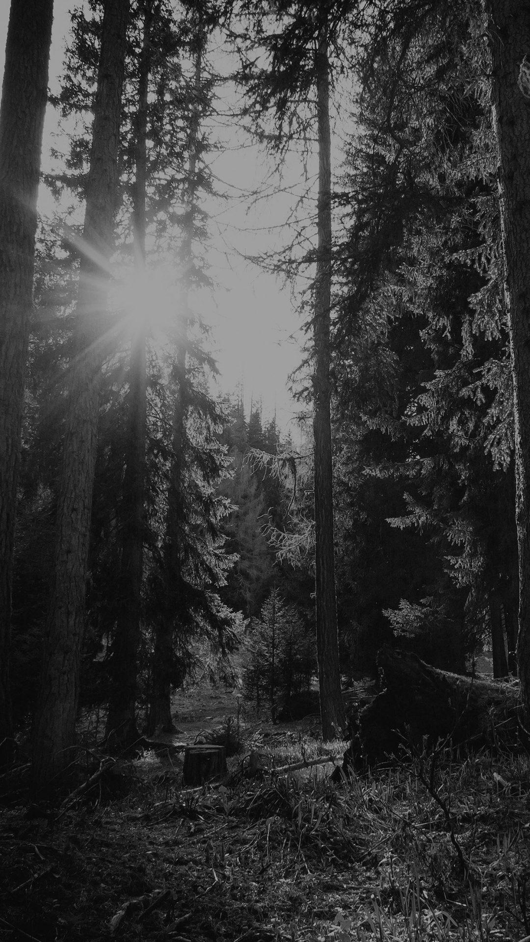 Mountain Sunlight Bw Marco Jorger Nature