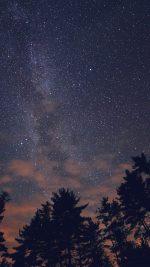 Night Sky Stars Milkyway Wood Nature Blue