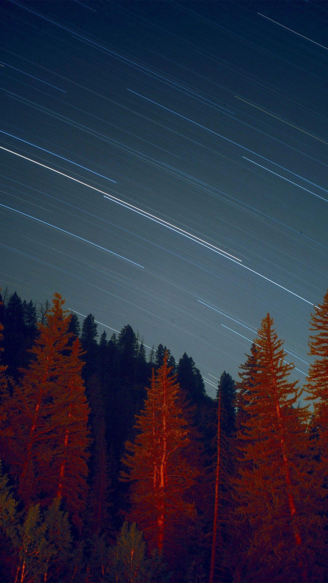 Night Wood Mountain Star Sky Nature