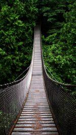 One Way Home Mountain Nature