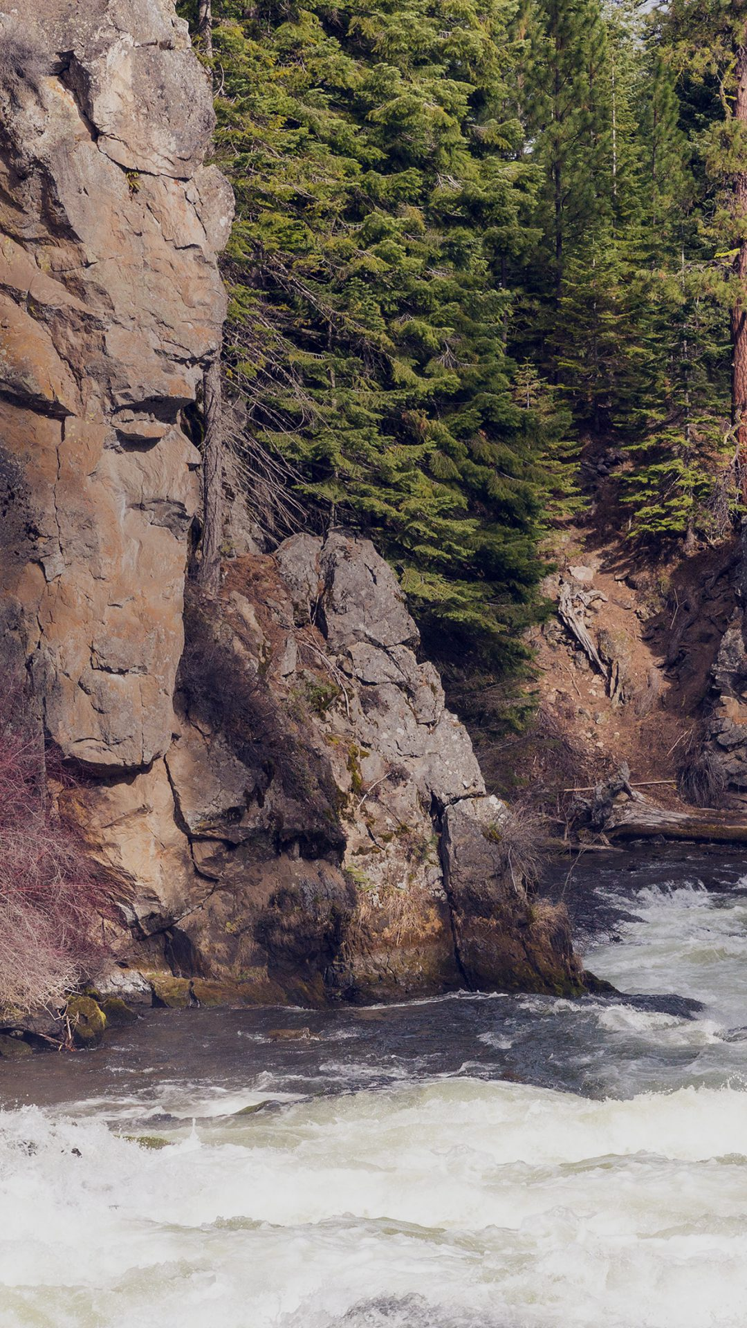 River Mountain Descheutes Nature Green