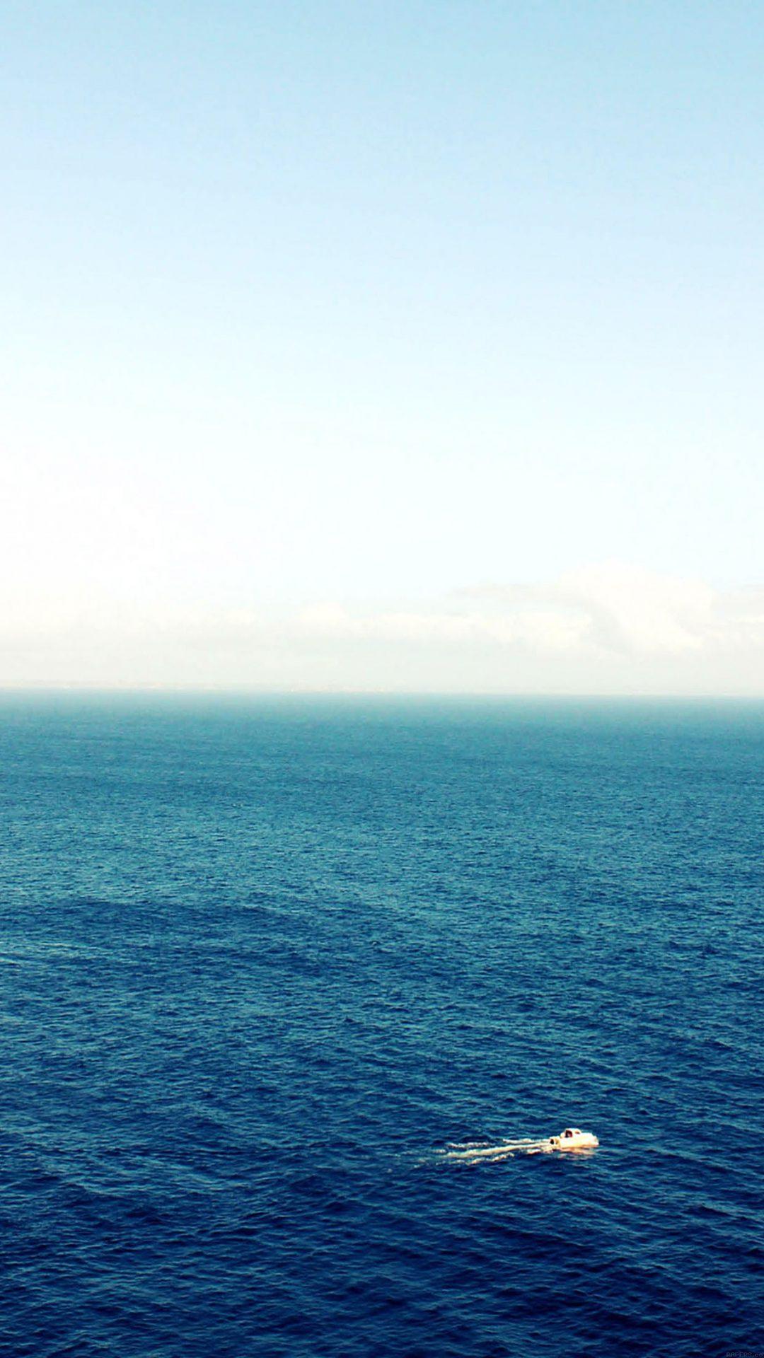Sea Pals Nature