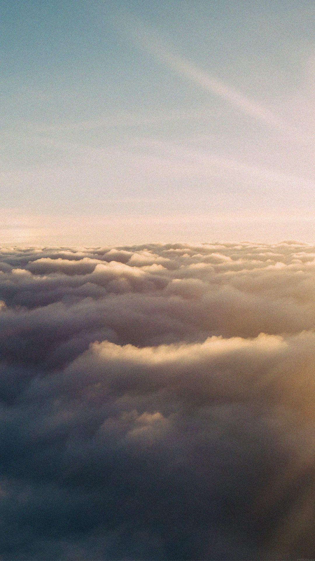 Sky Fly Sun Nature Liane Metzler