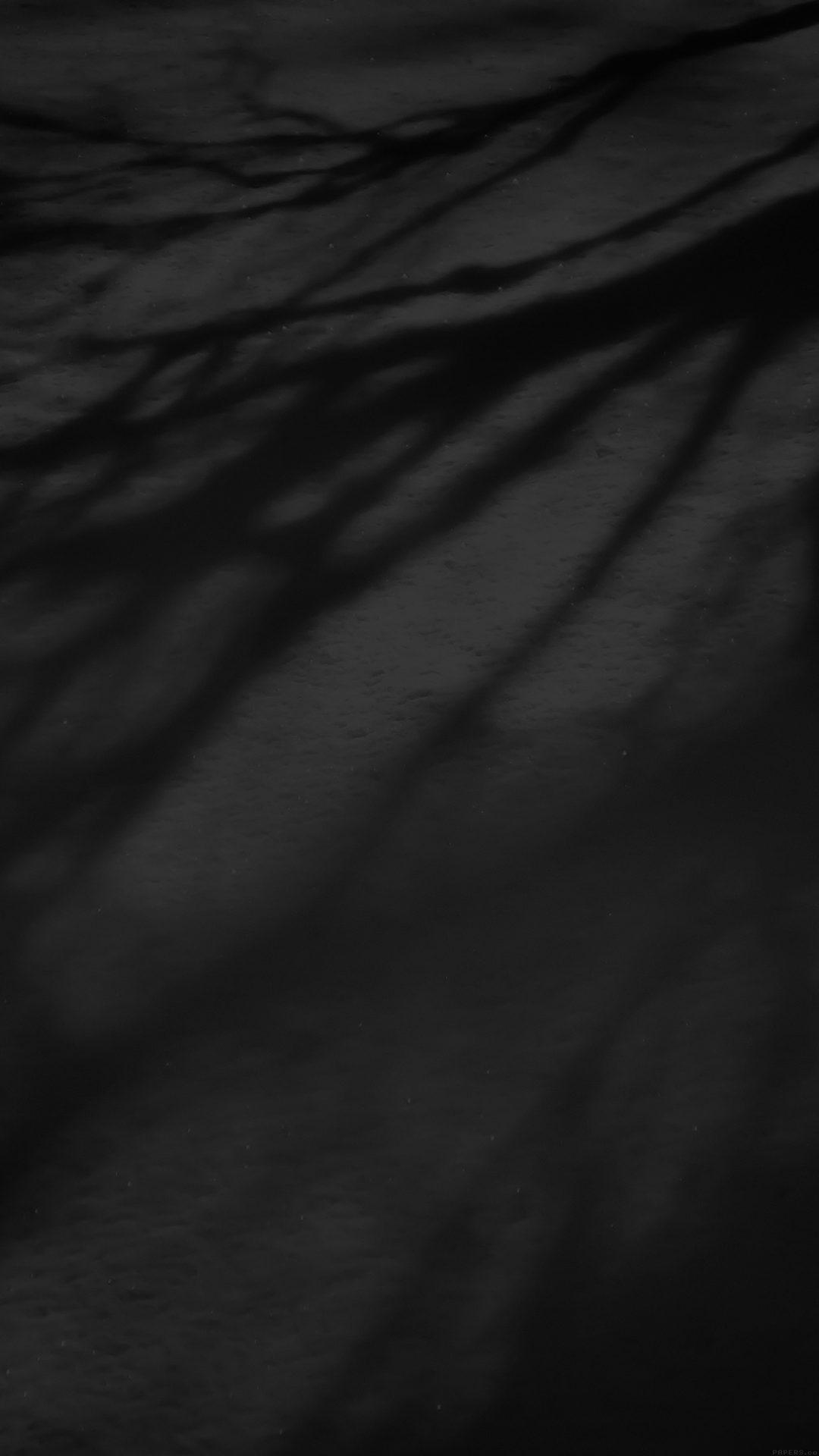 Snow Shadow Black Tree Nature