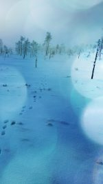 Snow Walk Winter Blue Bokeh Footprints Nature Mountain