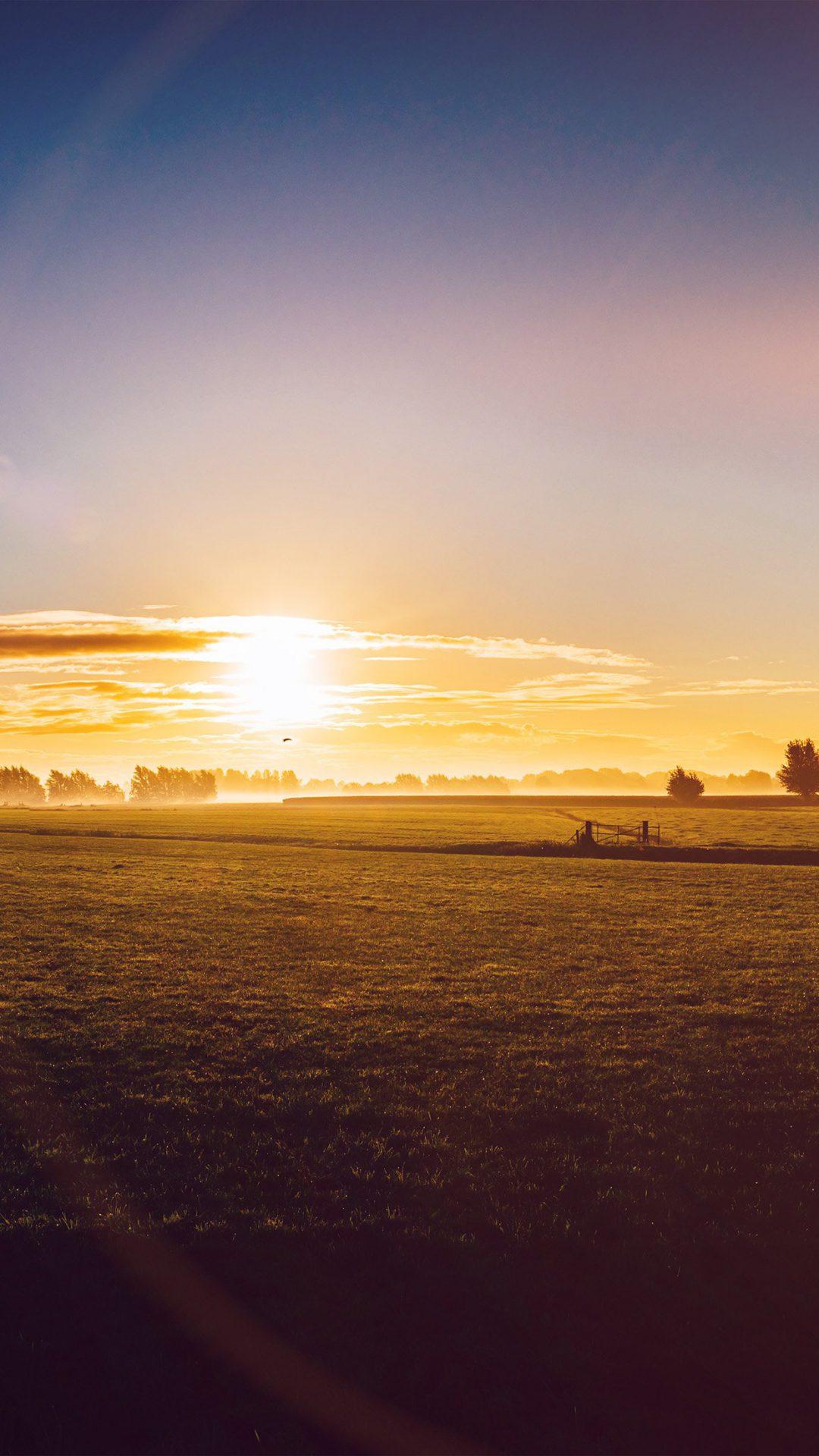 Sunny Morning Farm Peace Nature Flare