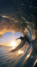 Surf Wave Sea Nature Sunshine