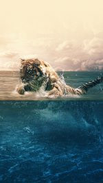 Tiger Running Blue Sea Nature